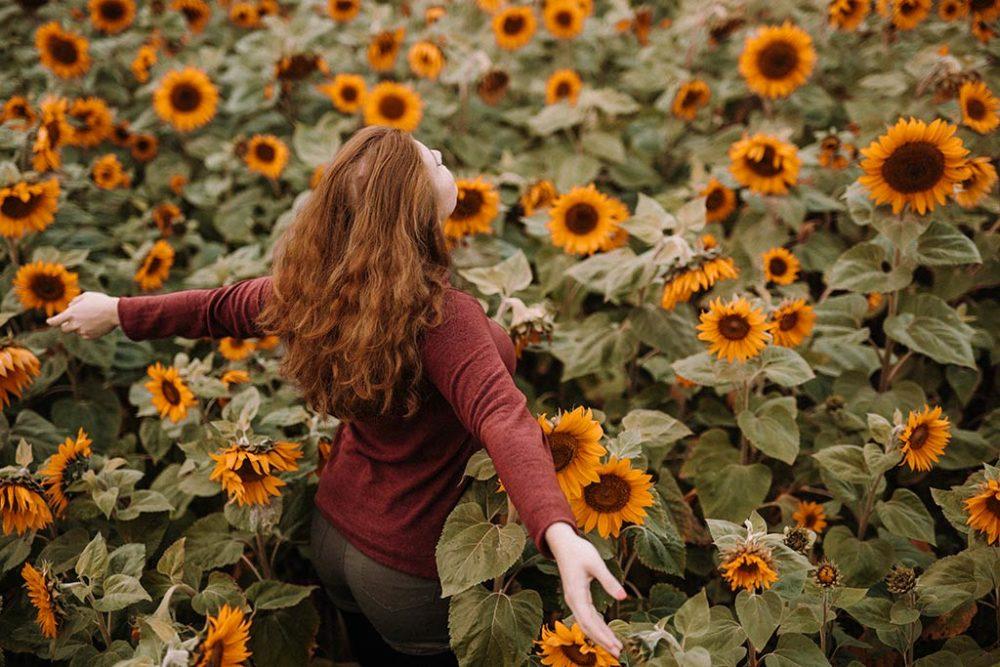 Fotoshooting im Sonnenblumenfeld in Siegen