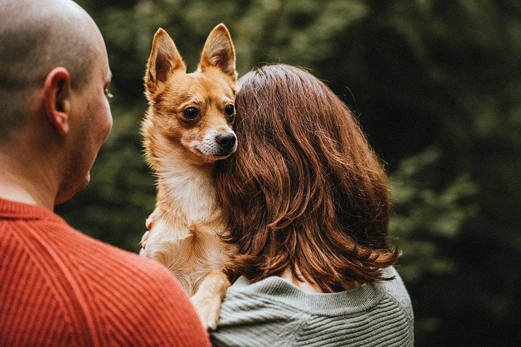 Paaffotografie Siegen Hundefotografie Hund Mensch