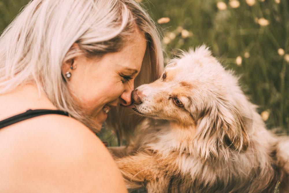 Fotoshooting mit Hund Fotograf in Siegen