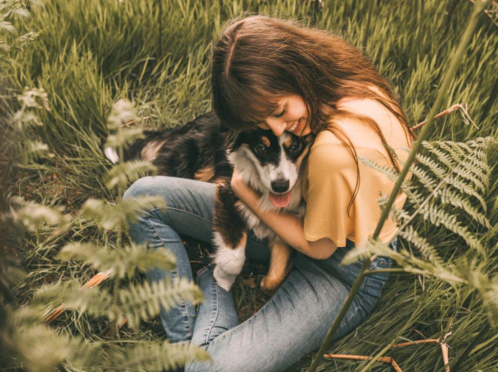 Hundefotografie Hund Hund Mensch Fotografie