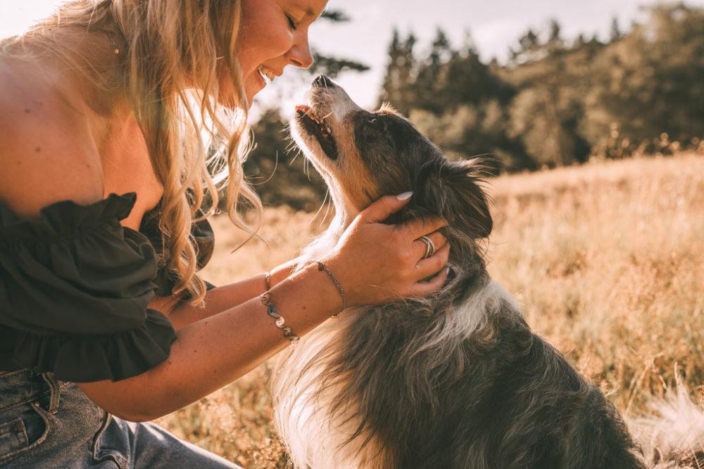 Tierfotografie in Siegen Hundefotos