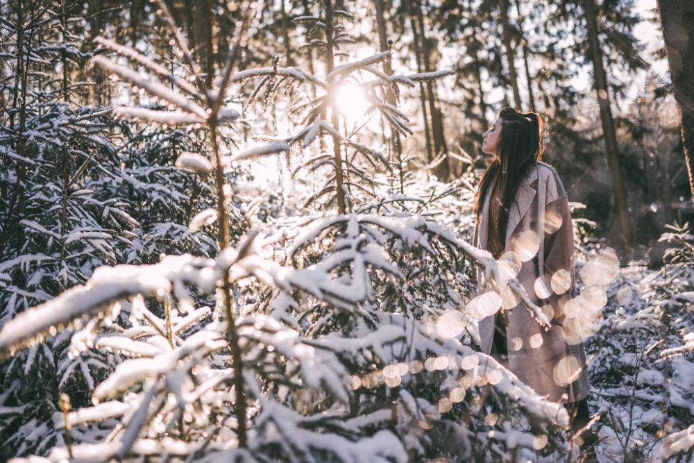 Tannenwald Fotoshootin Wintershooting Siegen